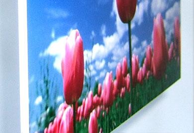Blickstoff - Platten Forex Bild 2